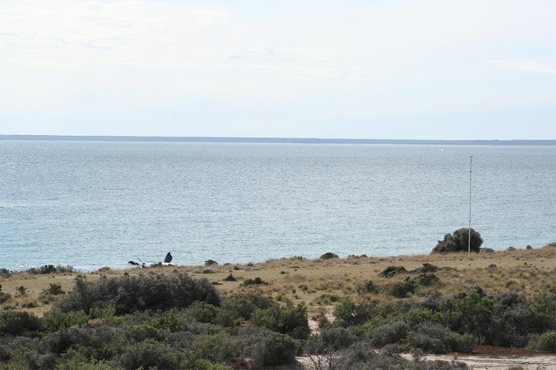 RainWise WindLOG is Key in Patagonia Research